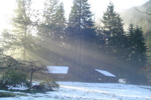 Sun's Fingers in Winter